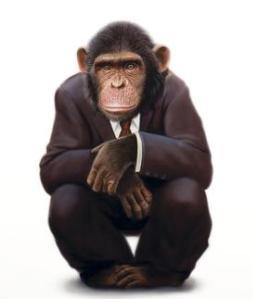 Cemal Maymunsoy